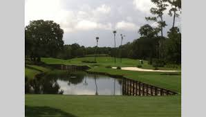 Sawgrass 13th
