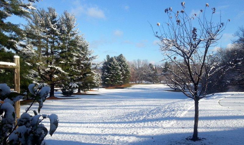 snowfirstfairway